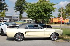 '66 Mustang?