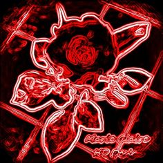 Neon Rose - I made this photo from a rose, and I modified