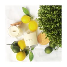 Lime Basil & Mandarin - shop our wood wick candles now.