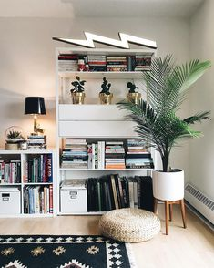 Ikea 'Fjälkinge' shelf @aniab