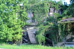Abandoned building overtaken by nature in Vaughan, Mississippi.