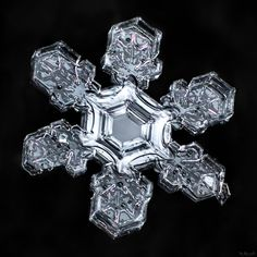 Broad branches on a snowflake are signs of slower growth, but this particular…