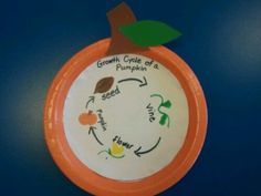 Our Preschoolers are learning about the life cycle of a pumpkin with this cute pumpkin craft. This visual is very helpful in their teaching.