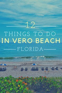 If you're interested in visiting a quiet coastal beach town, Vero Beach is the place you want to be. The town should be on the top of your bucket list. And here are the things you should do while visiting!