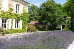 Fransk landsbygd, ca 40 000 kr för en vecka Gascon magnificent castle in the XVIth... - HomeAway Gers