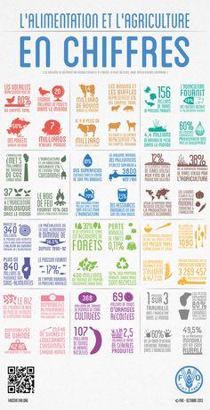 L'alimentation et l'agriculture en chiffres | Environnement et développement durable, mode de vie soutenable | Scoop.it