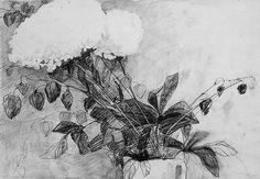 hydrangeas and cape gooseberries Cape Gooseberry, Hydrangeas, My Works, Abstract, Artwork, Painting, Art Work, Work Of Art, Auguste Rodin Artwork