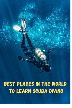 Want to learn scuba diving and explore life underwater? Here is the list of the world's best diving destinations where you can begin your diving adventure. Travel Guides, Travel Tips, Travel Destinations, Travel Info, Travel Hacks, Amazing Destinations, Travel Advice, Cruise Travel, Travel Usa