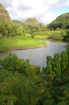 How beautiful is this? Oahu, HI