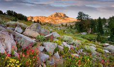 Carson Pass- Sierra Nevada