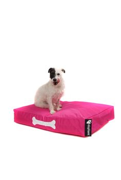 Shocking Pink Dog Beds For Small Dogs, Beds For Sale, Baby Care, Contemporary Design, Cosy, Camouflage, Your Dog, Elephant, Range