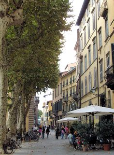 Lucca, province of Lucca, Tuscany region Italy - One of my personal favourites, now attached to our family by business