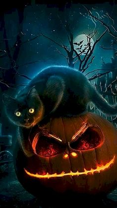 Montage sonore effrayant – Sonnerie Halloween Gratuite Halloween Ringtone Free – Sound Effects Montage Retro Halloween, Spooky Halloween, Image Halloween, Fröhliches Halloween, Holidays Halloween, Halloween Pumpkins, Halloween Decorations, Cute Halloween Pictures, Scary Halloween Images