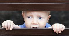 ¿Mitos o verdades? Descubre si tu familia es víctima de violencia intrafamiliar