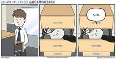 Business Cat - Cajón