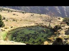 ▶ Wild Spain: Sierra Nevada (Andalucía) Part 1 -