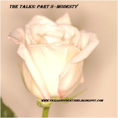 You are more than the sum of your parts--a talk on modesty