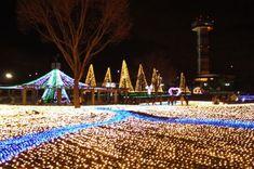 三川 公園 イルミ 木曽