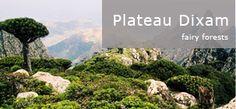 plateau_dixam(en)