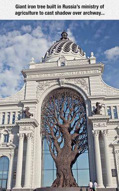 Magnificent Iron Tree