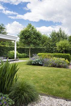 Backyard, Patio, Garden Landscaping, Future House, Garden Design, Golf Courses, Sidewalk, Exterior, Landscape