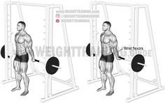 Behind-the-back Smith machine wrist curl. An isolation exercise. Target muscles: Wrist flexors. Synergists: None.