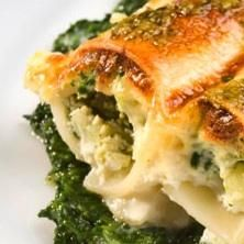 spinach cannelloni- one of my fav pasta dishes :) Spinach Recipes, Vegetarian Recipes, Healthy Recipes, Spinach Cannelloni, Spinach Lasagna, Lotsa Pasta, Sandwiches, Pasta Dishes, Wine Recipes