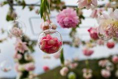Ceremony decor to hang from tree: maybe filled with a single hot pink bloom or even rose petals like pictured!