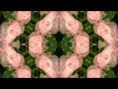 ▶ Gayatri Mandala 108x (36 minutes) - YouTube