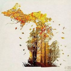 """""""Its time to celebrate #fall in #michigan , like if you love this time of year!"""""""