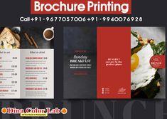 Brochure Printing, Brunch, Free Shipping, Prints