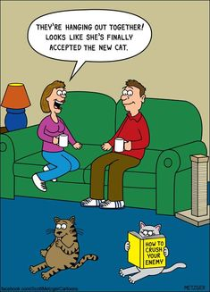 Funny cartoons of cats interacting with their environments by Scott Metzger. Cat Jokes, Funny Animal Memes, Animal Humour, Funny Animals, Amazing Animals, Cat Comics, Funny Illustration, Funny Animal Pictures, Funny Cartoons