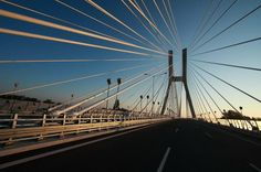 Rędziński Bridge is a cable-stayed bridge spanning the Oder river in Wrocław. It is the highest (122 m) and the longest (512 m) single pylon bridge in Poland. It has also the biggest surface (70 000 m2) in the world within bridges made of reinforced concrete.
