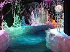 ICE at Gaylord Opryland  Nashville, Tennessee