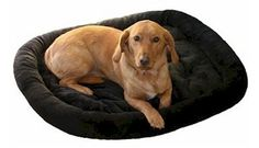 """Bolstered Fur Pad – Petiquette Dogs - A combination of comfort and durability make this bed perfect for any pet owner trying to give their pet a cozy place to call their own. Spun polyester filling and soft fur exterior make this bed comfy and cozy. """"Like"""" or """"Pin"""" this and use discount code """"Pin5"""" for 5% off."""