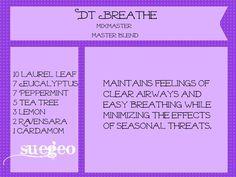 DoTerra Breathe copycat blend