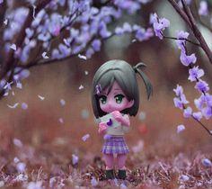 nature photos for dp