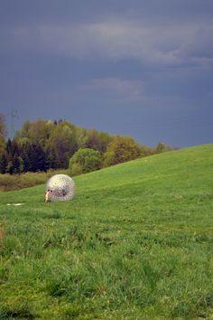Zorbing, Bieszczady