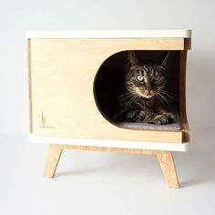 Stylish plywood cat house, modern cat bed, gift for cat lover, cat cabinet, grey pillow, modern cat furniture, pet supplies, PurrFur #cathouseplywood