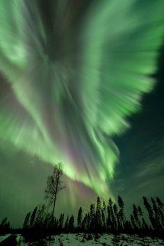 Eine Reise nach Mittelschweden ins schöne Jämtland ist zu allen Jahreszeiten tief beeindruckend und wenn es nachts dunkel wird (Mitte August bis Ende April) kann man mit etwas Glück auch Nordlichter bestaunen. Ich fahre…