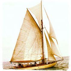 Classic sailing boat- Wayward 1908 - benoit bouffard