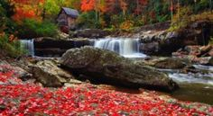 The West Virginia Park That Will Make You Feel Like You Walked Into A Fairy Tale