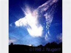 Real Angel Sightings - Bing Images