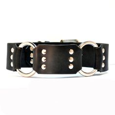 CRATUS  2 Leather Dog Collar Simple and Elegant by CanisMolossus, $49.95