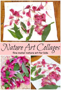 Nature Art Flower Collages for Kids! A simple open-ended process art project for toddlers and preschoolers using flowers and leaves from nature! A fun way for kids to explore art while learning about local nature! #artforkids #openendedart #processart #kidscrafts #naturecrafts Art Activities For Toddlers, Summer Activities For Kids, Creative Activities, Creative Play, Sensory Activities, Sensory Play, Learning Activities, Toddler Art Projects, Toddler Crafts