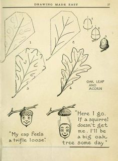 """Today's Drawing Class Featuring lessons from the 1921 vintage book """"Drawing made easy : a helpful book for young artists"""" by E Lutz Book Drawing, Nature Drawing, Plant Drawing, Drawing Lessons, Drawing Sketches, Drawing Hair, Drawing Faces, Drawing Tips, Sketching"""