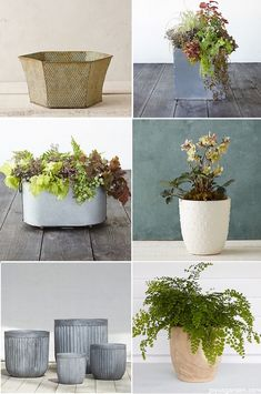 Decorative Tabletop Planters For Houseplants. We love houseplants! Here's a round up of container for you to choose from.