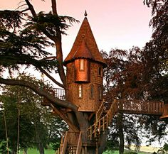 treehouses in maryland | Most expensive treehouses | Informal.RO