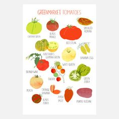 Greenmarket Tomato Print 9x12, $20, I want all these market prints for my kitchen!
