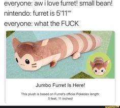 0 Neal Rice everyone: aw i love furret! nintendo: furret is Jumbo Furret Is Here! Thls plush ls based on Furret's official Pokédex length: 5 feet, 11 Inches! Pokemon Comics, Pokemon Funny, Pokemon Memes, Cool Pokemon, Pokemon Go, Pokemon Plush, Nintendo Pokemon, Stupid Funny, Funny Cute